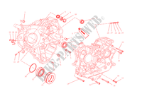 COPPIA SEMICARTERS per Ducati Monster 1200 2015
